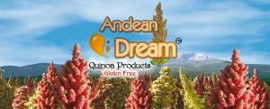 AndeanWebLogo2